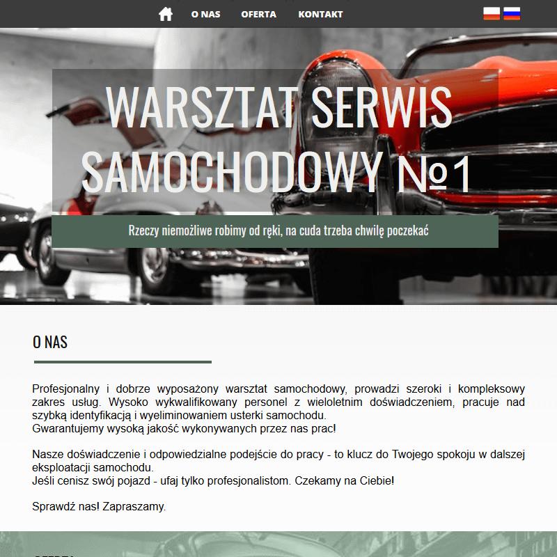 Mechanik samochodowy - Sulejówek